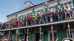 Mardi Gras Cams