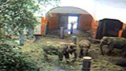 Tierpark Hellabrunn Zoo