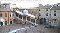 Ferrara Cams