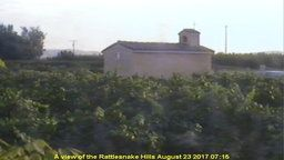 Bonair Winery Vineryard Cam