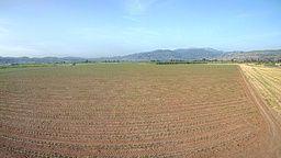 Israel Farm Cam