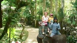 Bali Elephant Cam Trail Path
