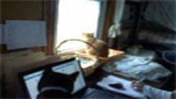 Zedrea Digital Office Cam