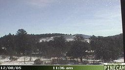 Pine Junction WeatherCam