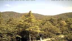 Spruce Pine, NC Webcam
