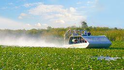 Everglades Cam, Florida