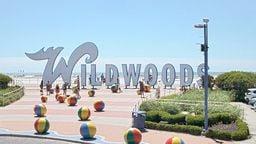 Wildwood Cam