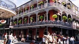 New Orleans Cats Meow Balcony, Louisiana