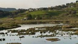 Urdaibai Reserve