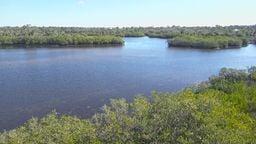 Florida State Park Cam