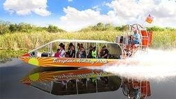 Everglades Cam