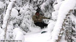 Whistler Mountain Web Cam