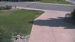 Watching Grass Grow Webcam