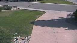 Watching Grass Grow Webcam