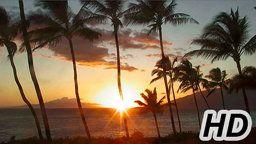 Maui Cam
