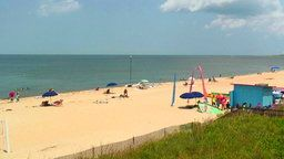 Virginia Beach Cam, Virginia
