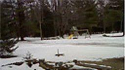 Weather Cam Roscommon, Michigan