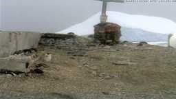 The first Antarctica penguin webcam!