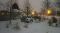 Backyard Weather Cam