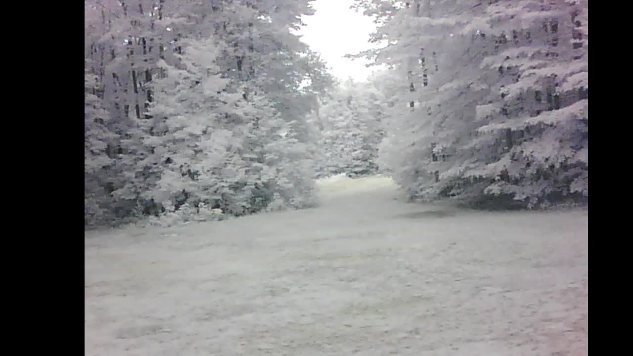 Kalkaska Michigan NorthTroll WEBCAM