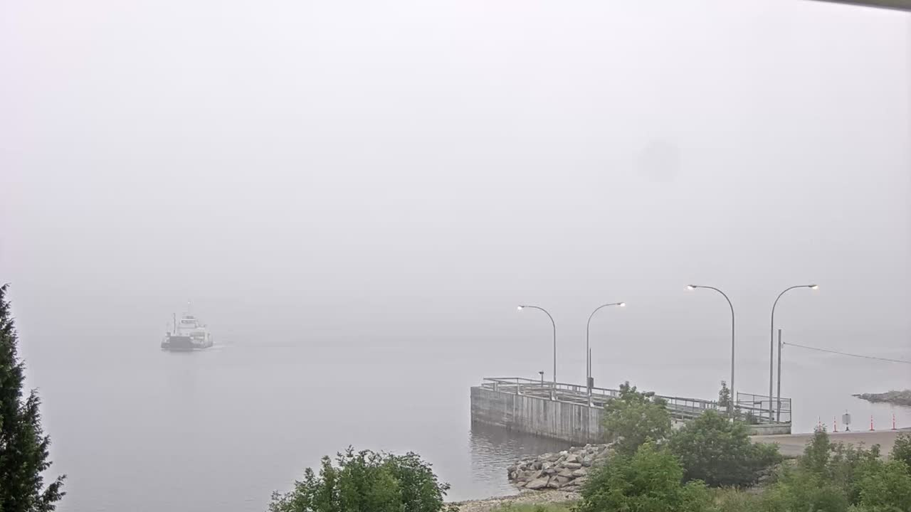 Kingston Peninsula Princess Ferry Live Stream